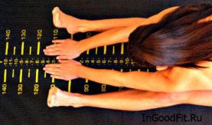 Оценка физического состояния и тест на гибкость