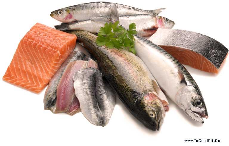 источники белка в питании.Рыба