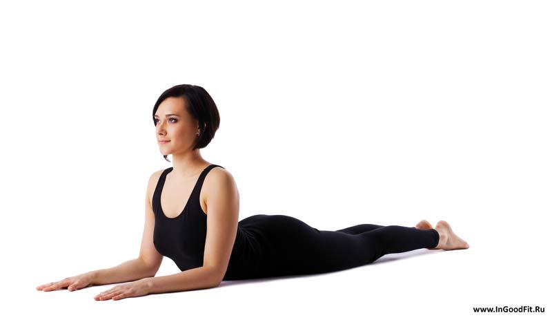 йога для спины. поза сфинкса