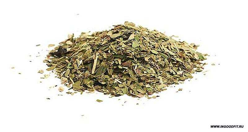 чай мате вред и польза
