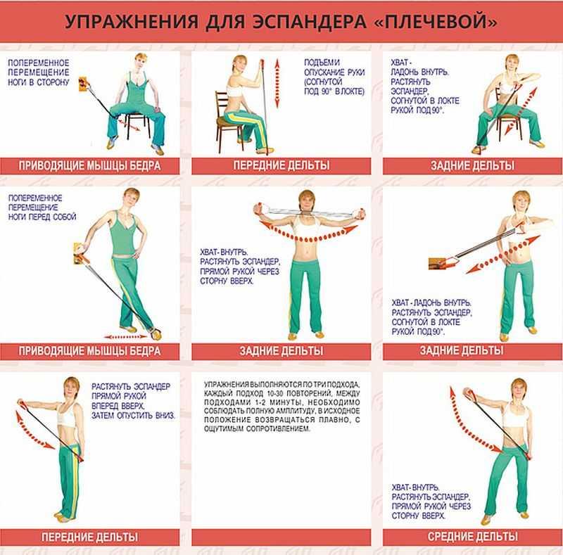 упражнения с резиновым эспандером для домашних условий