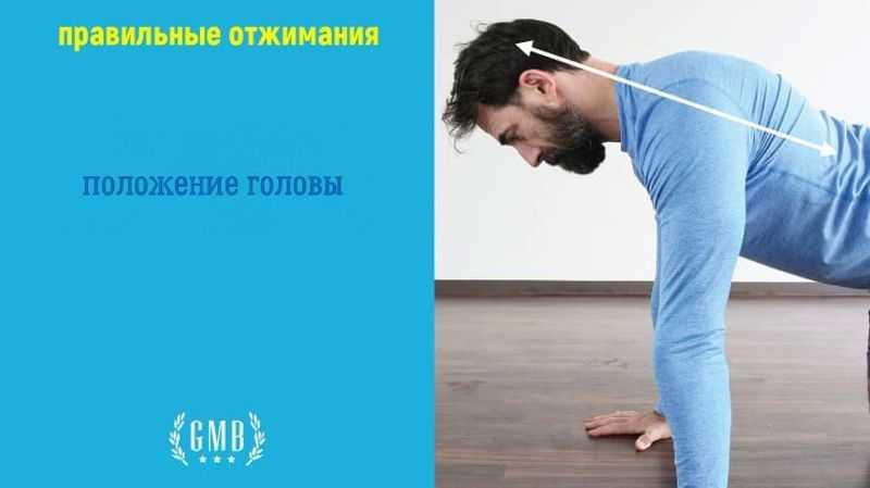 техника отжимания. положение головы
