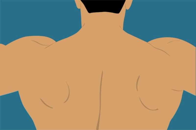 плечи тренируются при алмазном отжимании